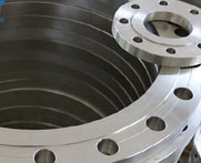 Stainless steel 316/ 316L Flanges Manufacturer/Supplier