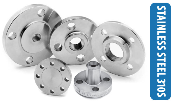 SS 310S Flanges